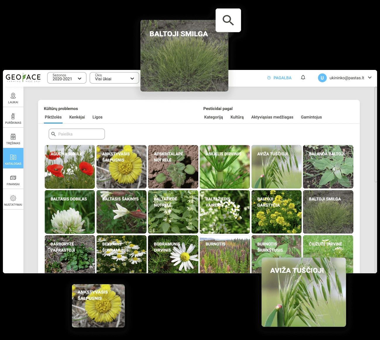 Не узнаёте вредителя, болезнь или сорняк на поле? Не проблема. Это поможет вам сделать каталог вредителей, болезней и сорняков.